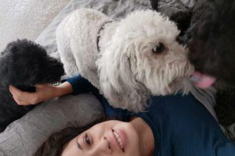 ¿Con quién se queda el perro?